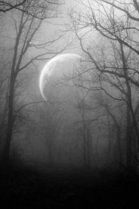 mistymoonlight